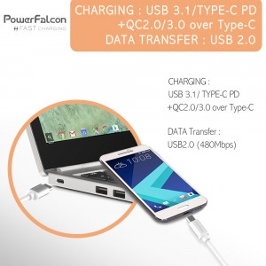 Power Falcon USBC-C Fast Charging USB-C to USB-C Charging & Data Cable